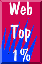 Top 1% On The Web